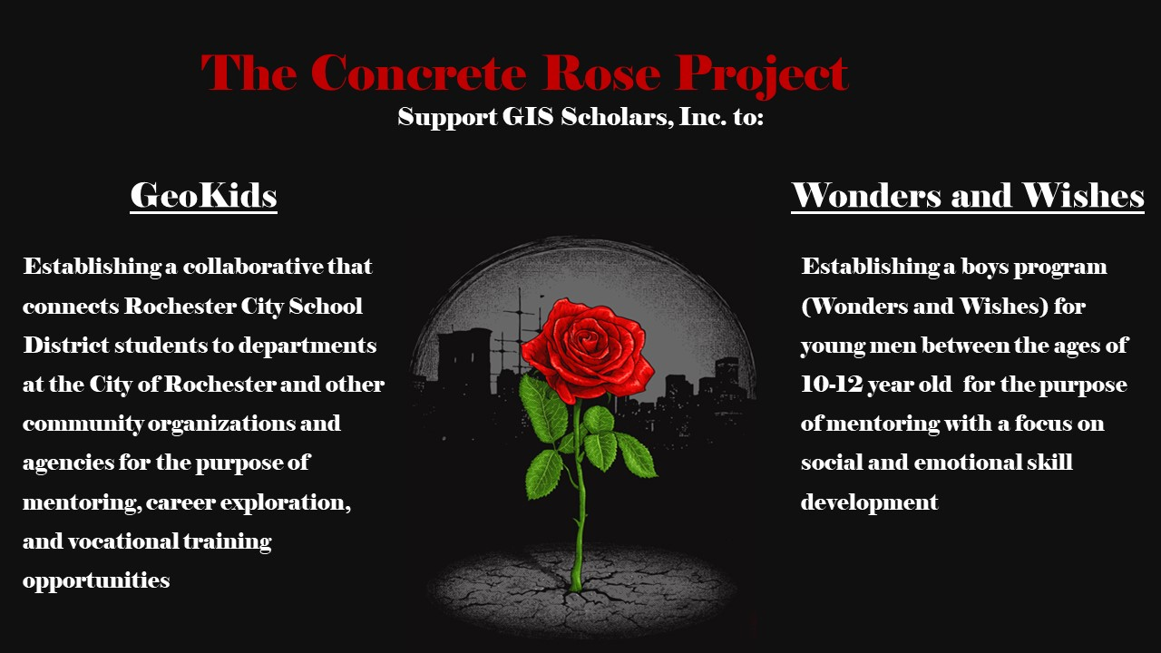 Image for Concrete Rose Project